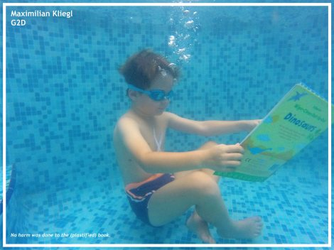 max-kliegl-reading-pool-2d